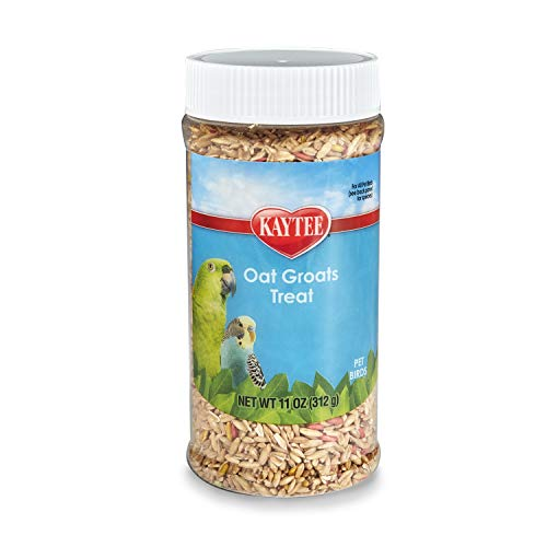 Kaytee Oat Groats Bird Treat,11-Ounce