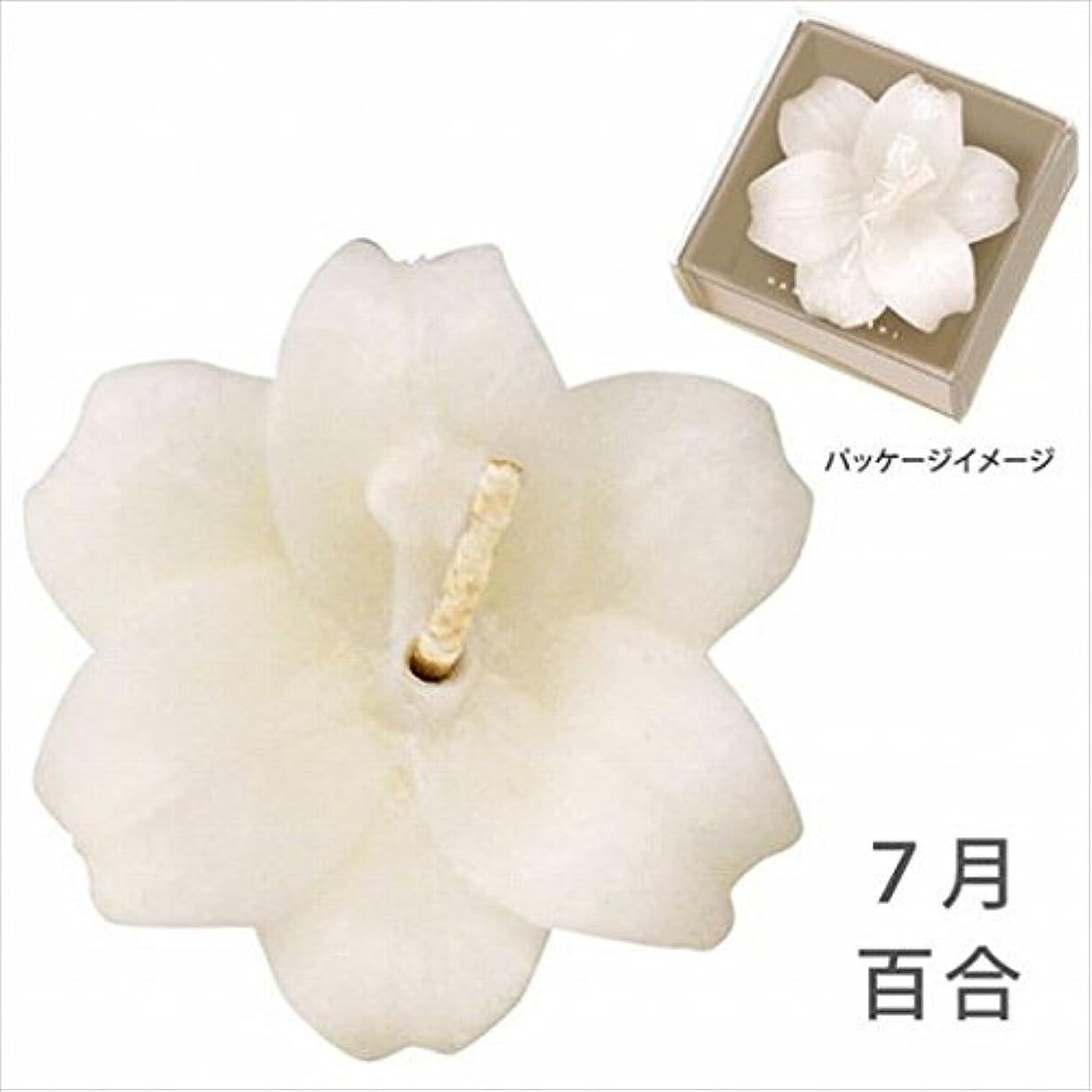 羽シェル無法者カメヤマキャンドル(kameyama candle) 花づくし(植物性) 百合 「 百合(7月) 」 キャンドル