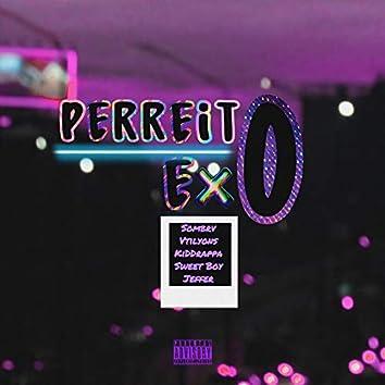 PerreitoExo (ExoDreaMusic)