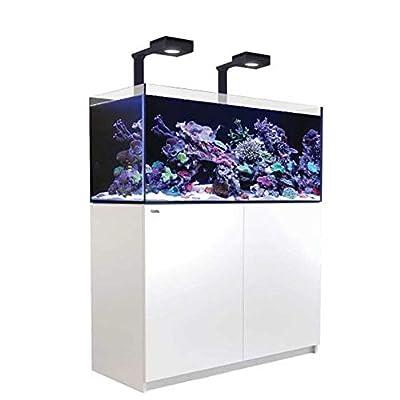 Reefer Red Sea Deluxe Aquarium pour Aquarium Blanc 350 l