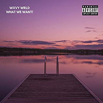 Happiness (What We Want) [feat. Mip]