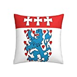 Kissenbezug, Motiv: Flagge Uelzen im unteren Saxonon, Deutschland, quadratisch, dekorativer Kissenbezug für Sofa, Couch, Zuhause, Schlafzimmer, für drinnen & draußen, 45,7 x 45,7 cm