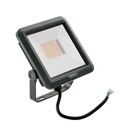 Philips, BVP105, Proyector LED Exterior 4000 K, LED 27W 2500 LM, Negro
