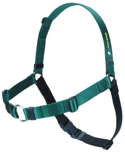Softouch Sense ation No Pull Dog Harness Green Large