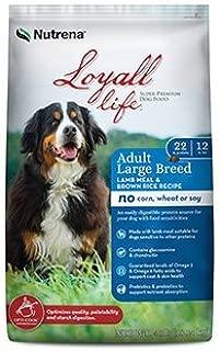Loyall Life Adult Large Breed Lamb Meal & Rice