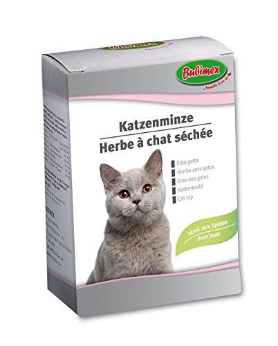 Bubimex Hierba de Gato Cat Nip Friandise para Gato 20G––Juego de 6