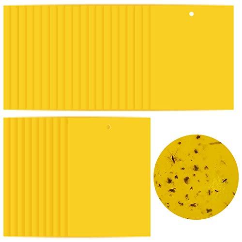 DBAILY Amarillo Trampas Adhesivas, 30 Piezas Asesino Plagas Pegajosa Insectos Pegajosas Trampas De Doble Carapara Moscas Polillas