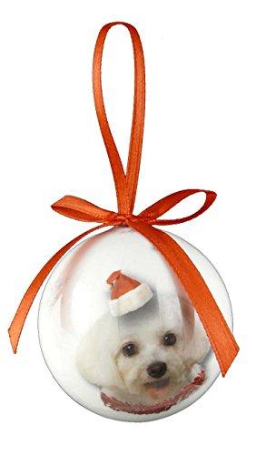 Christmas Direct-Palla per albero di Natale con animali, Maltese, dimensioni: 5 cm ((2') 5,08 cm)