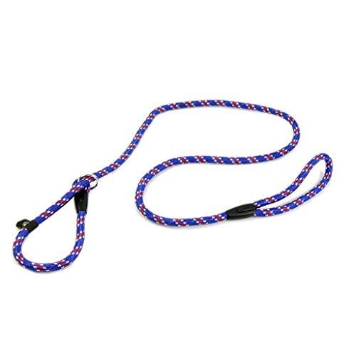 Sunnysam Hundeleine Pet Chain Cesar Millan Leine und Halsband Stil 140cm Whisperer Slip Training Korrektur