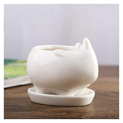 DALIBAI Simple Mesa Tiesto Blanco Moderno suculento de vasijas de cerámica Planta de contenedores Jardinera Jardín Balcón Decoración Hogar Deco Regalo de cumpleaños, 7.8x6.3x7.5cm DA
