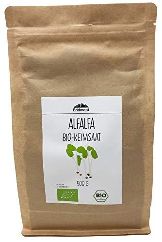 Eddmont Alfalfa Keimsprossen 500 g | Luzerne Sprossen Keimlinge Microgreens Samen