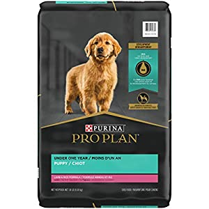 Purina Pro Plan Real Meat, High Protein Dry Puppy Food, Lamb & Rice Formula – 18 lb. Bag