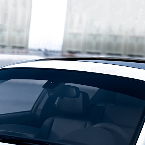 FOLIENTECHNIK BAYER 1078 Blendstreifen kompatibel mit Volkswagen Golf 7 GTI R (Schwarz)