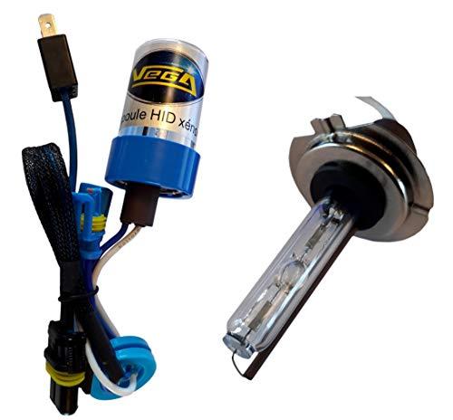 1 x HID Xenon Lampe Marke Francaise Vega® H7 5000K 55 W mit gebogenem Sockel