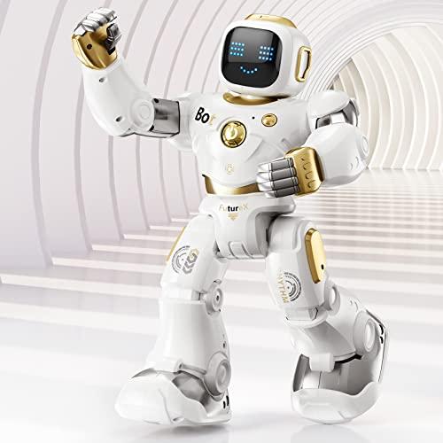 Ruko AI Robots Features