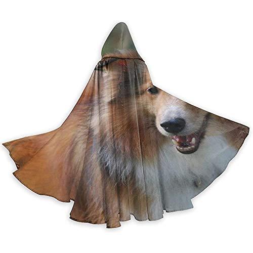 Niet geschikt cape kostuum, losse omhanging, volwassenen pet met capuchon, capuchon lange cape, leuke sheltie Breed hond vampirumhang, feest-/kerstkostuum