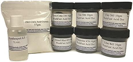 WashFast Desert Acid Dye Sampler