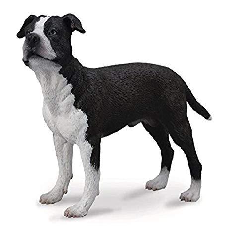 Collecta – 3388610 – Figur – Tier – Hund – American Staffordshire Terrier