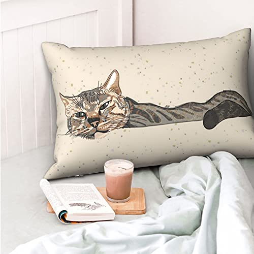 VVSADEB Funda de almohada Lazy Sleepy Cat de 50,8 cm x 70,8 cm, funda de almohada con cremallera, suave y acogedora, arrugas, tamaño estándar, 1 paquete