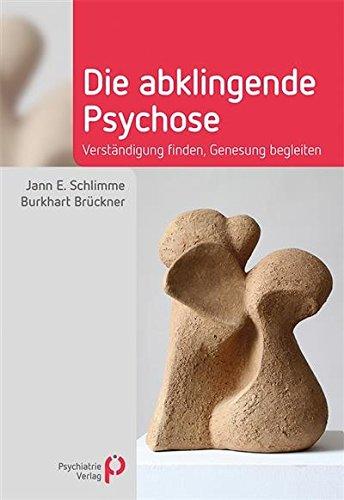 Die abklingende Psychose: Verständigung finden, Genesung begleiten (Fachwissen)