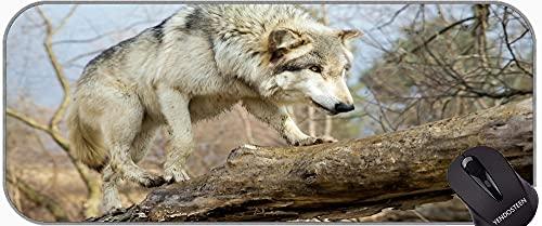 Mousepad de Goma Antideslizante XXL Grande con Bordes cosidos Fauna Silvestre Depredador Lobo Gran Matería de Juego