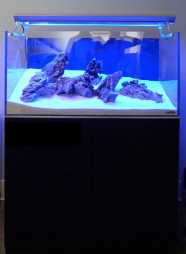 Landen 30C 7.1 Gallon Rimless Low Iron Aquarium Tank, 11.8