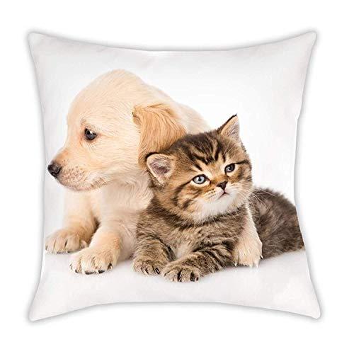 KK kussen knuffelkussen sierkussen met hond en kat 40 x 40 cm