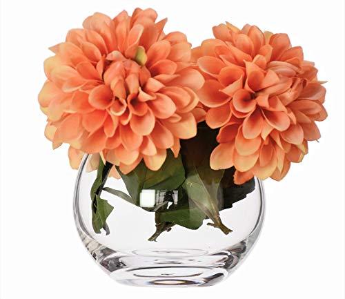 Pecera de cristal redondo contemporáneo estilo florero y#x2205;12/9,5 cm de alto MINI