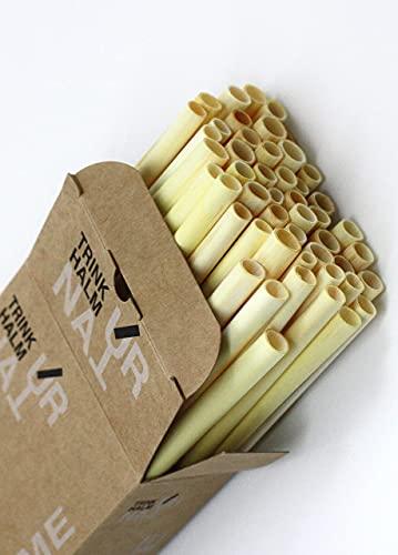 Cannucce di canna, naturali, vegetali, compostabili, senza plastica, bio, usa e getta, riutilizzabili, alternativa al bambù, acciaio inox o vetro (50, L 20 cm / Ø 5-8 mm)