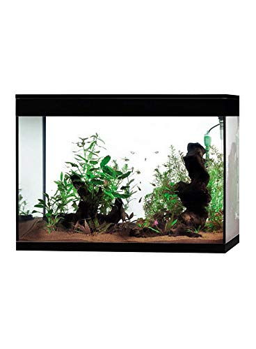 Askoll Aa350074 Pure High Cube LED Aquarium XXL, schwarz