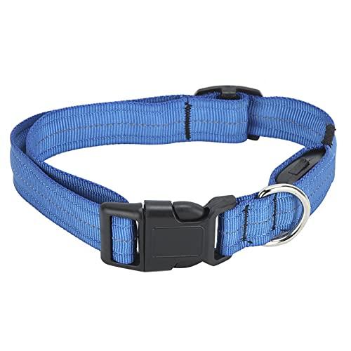 Resistente al Desgaste, Collar LED para Mascotas, con Hebilla de tracción con Anillo en D, Collar de Carga USB(Blue, M)