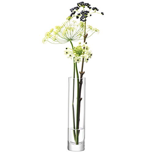 LSA International - Florero en forma de tubo Isa International (delgado) 25 cm de altoØ6cm de diámetro, transparente