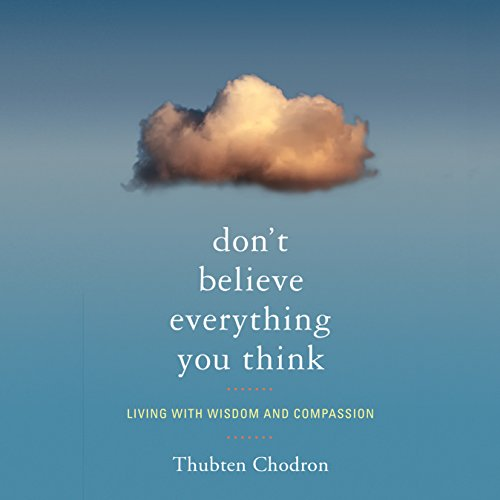 Don't Believe Everything You Think audiobook cover art