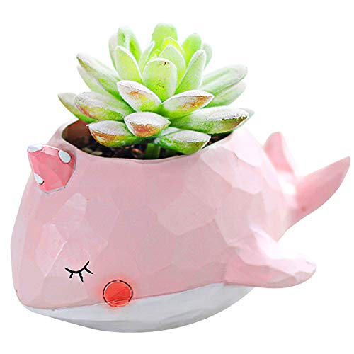 Gift For Her - Indoor Cute Plant Pots Flower Vase for Planters Herb - A Garden Ornaments/Decoration With Small Pink Whale Animal Shape for Auntie Mom Children Men Women At Office Desk Kitchen Windows