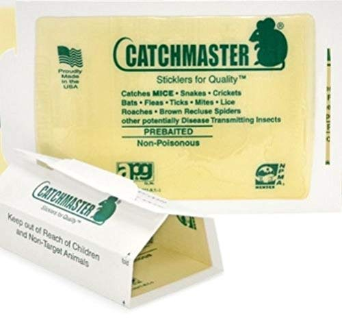 Catchmaster Insect Boards Spider Sticky