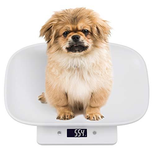 Digitale Waage für Haustiere Max 10 kg HD LCD Display mit Hintergrundbeleuchtung für kleinen Haustieren, Welpen, Katzen, Hunden, Papageien, Hamstern. Haustierwaage Tierwaage