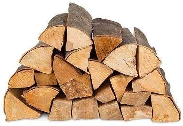 Brennholz – Hier zeigen wir dir die beliebtesten Brennhölzer
