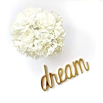 Dreams I Knew