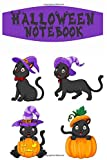 Halloween Notebook: Funny Gift idea for Halloween │Novelty Lined Journal│ Cat Lovers