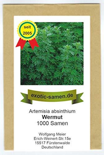Wermut - Artimisia absinthium (1.000 Samen)