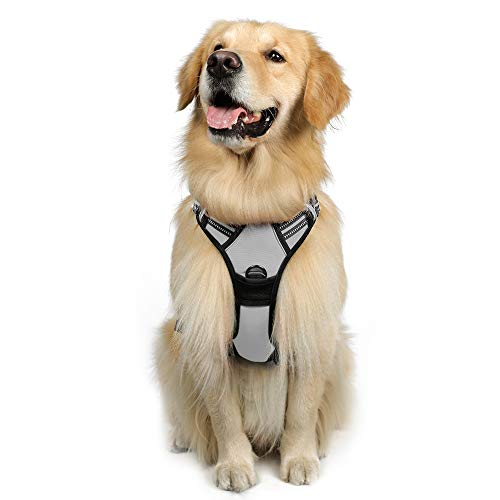 rabbitgoo Dog Harness, No-Pull Pet Harness with 2 Leash Clips, Adjustable Soft Padded Dog Vest, Reflective No-Choke Pet Oxford Vest with Easy Control Handle for Large Dogs, Grey, L