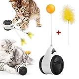 Katzenspielzeug, Interaktives Spielzeug für Katzen, Federspielzeug, Catnip Katzenspielzeug Beschaftigung & Ausbildung Innen Tumbler Drehbarem Bälle & Federn, ohne Batterien