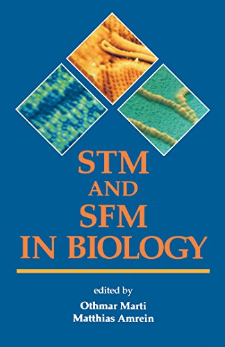 STM and SFM in Biology (English Edition)