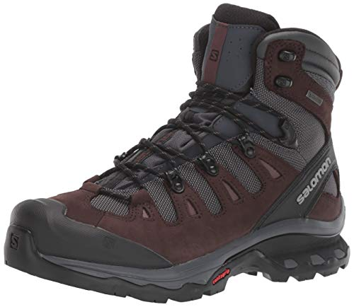 Salomon Women's Quest 4D 3 GTX Backpacking Boots, Ebony/Chocolate Plum/Peppercorn, 11
