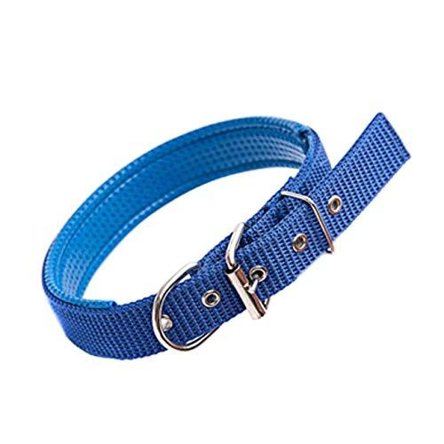 Tuzi Qiuge Haustier-Leine Hundehalsbänder Hundehalsband Hundehalsband Katzen Hunde Halsbänder Schaum Baumwolle Klassisches Polyester Verstellbarer, 3.5cm X 57cm (Color : Blue)