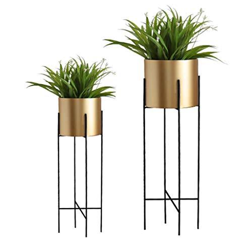 Support pour Plantes Support pour Pot de Fleurs Support pour Support de Rangement Support de Rangement Échelle Balcon Fer Chambre à Coucher Bureau Terrasse Taille 22x71 / 25x78 cm (LxH) Or