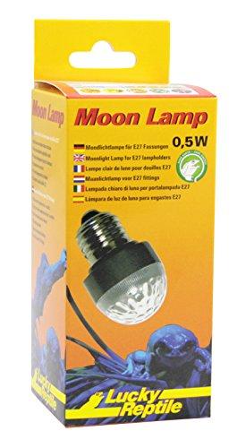 Lucky Reptile ML-1 Moon Lamp, Mondlicht LED Lampe für E27 Fassung