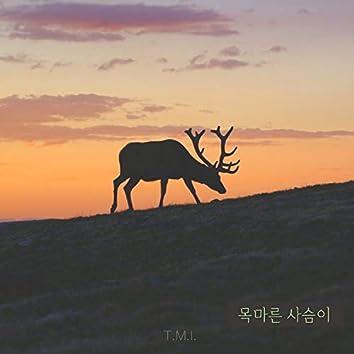 목마른 사슴이 As the Deer