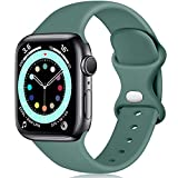 Epova Compatible con Correa Apple Watch 38mm 40mm, Mujer Hombre Silicona Pulsera para iWatch SE Series 6 5 4 3 2 1, Pino Verde, Pequeño