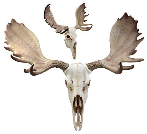 Ebros Czar North American Bull Moose Skull Wall Decor 22